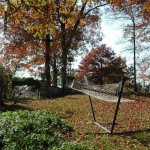 Hammock in the Fall